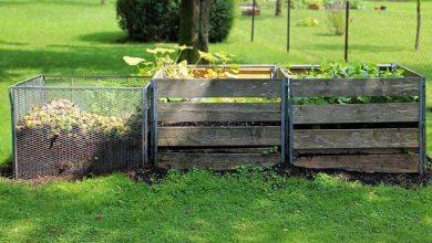 Photo of Nejlepší hnojivo pro vaši zahradu? Vlastní kompost!