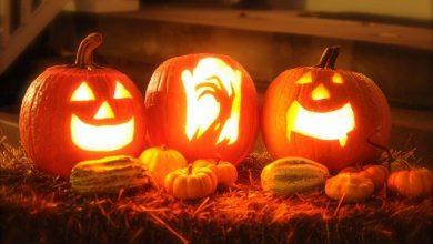 Photo of Dýně jsou neodmyslitelnou součástí podzimních dekorací i Halloweenu, aneb Vyřezáváme dýně!