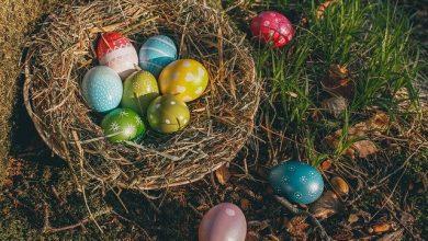Photo of Velikonoční svátky jsou na spadnutí. Jak a čím na Velikonoce vyzdobit byt?