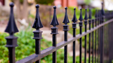 Photo of 3 výhody plotových zástěn, které si prostě zamilujete